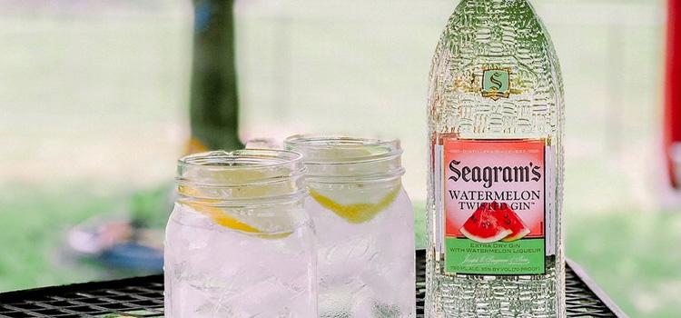 Watermelon Twist & Tonic